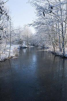 Svetlana Sewell - Winter Landscape