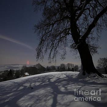 Angel  Tarantella - Wintery landscape in the night