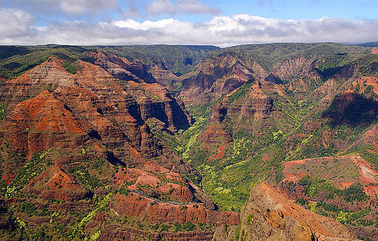 Robert Lozen - WAIMEA CANYON
