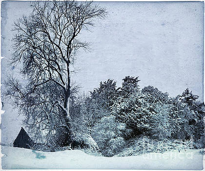 Angel  Tarantella - wintery landscape