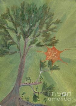Robert Meszaros - a great tree grows