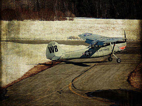 Pamela Phelps - Airplane at Wurtsboro Airport