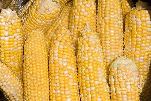 James BO  Insogna - Bushel of Pealed Corn