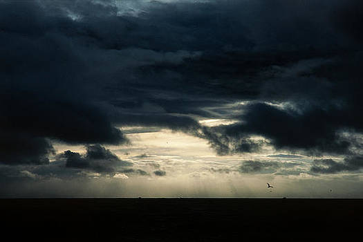 Hakon Soreide - Clouds Sunlight and Seagulls