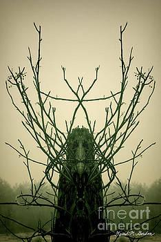 David Gordon - Creature of the Wood