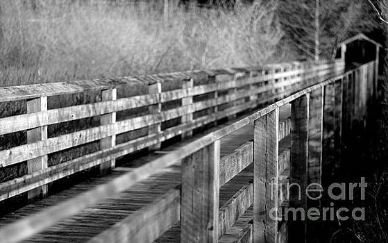 Marilyn Wilson - Cross Over the Bridge - bw