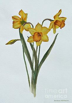 Barbara McMahon - Daffodil Delight