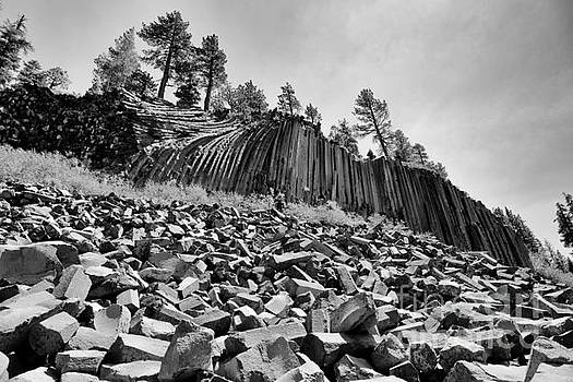 Terry Garvin - Devils Postpile National Monument