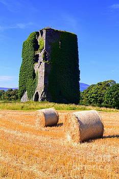 Joe Cashin - Dove Hill castle