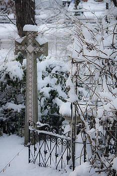 Teresa Mucha - Dreamy Snowy Cross