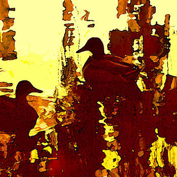 Amy Vangsgard - Ducks on Red Lake 3