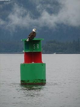 KarinThue - Eagle on Bouy