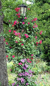 Nick Gustafson - Flowered Lamp Post