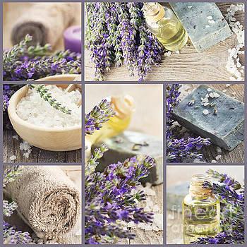 Mythja  Photography - Fresh lavender collage