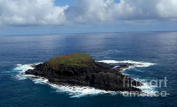 Butch Phillips - Island of Kilauae