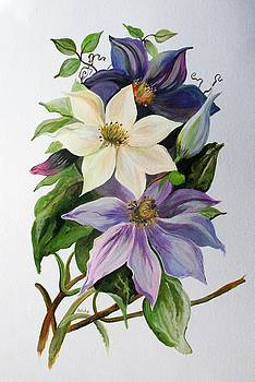 Tracey Harrington-Simpson - Lilac Clematis