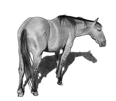 Joyce Geleynse - Lone Horse in Pencil