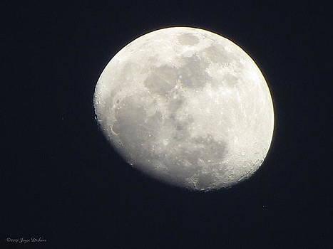 Joyce Dickens - Moon 022113