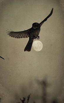 Emily Stauring - Moon In Flight 2
