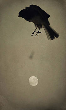 Emily Stauring - Moon In Flight 3