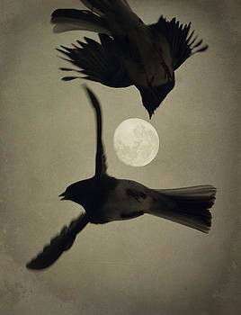 Emily Stauring - Moon In Flight 7