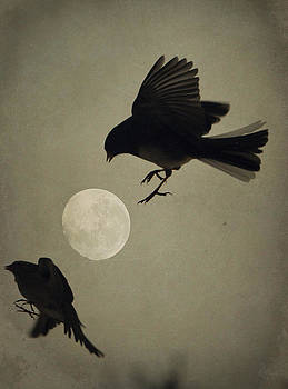 Emily Stauring - Moon In Flight 8
