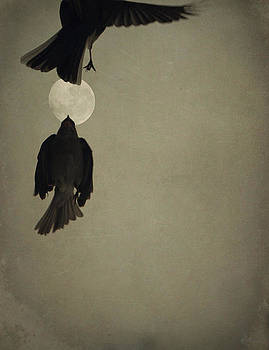 Emily Stauring - Moon In Flight 9