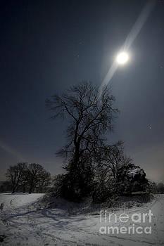 Angel  Tarantella - Moonlight and the snow