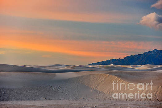 Sandra Bronstein - Morning Glory in White Sands