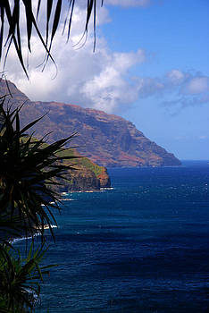 Robert Lozen - NAPALI COAST SUMMER