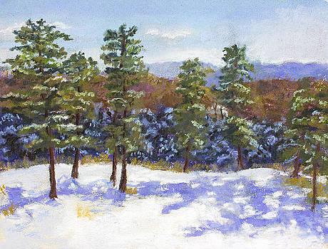 Jennifer Richard-Morrow - Place of the Pines