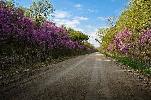 Eric Benjamin - Purple Road