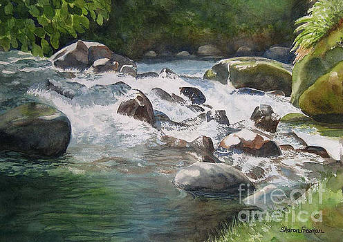 Sharon Freeman - Rushing River in Costa Rica