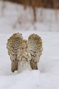 Daniel Kasztelan - Snow angel
