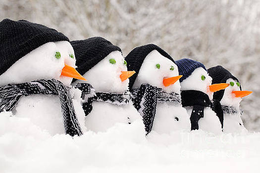 Simon Bratt Photography LRPS - Snowmen close up in a row
