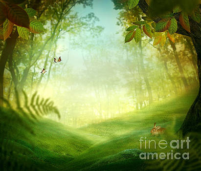 Mythja  Photography - Spring design - Forest meadow