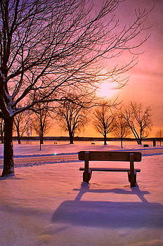 Emily Stauring - Sunset Bench