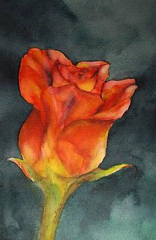 Donna Pierce-Clark - Sunshine and Roses