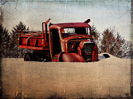 Pamela Phelps - Survivor Truck