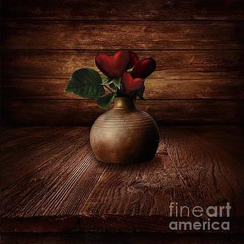 Mythja  Photography - Valentines design - Heart Flowers