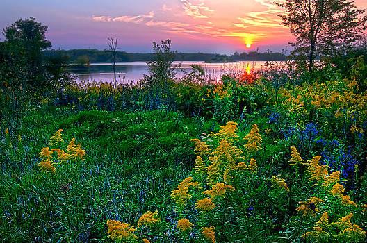 Randall Branham - WILD FLOWERS SUMMIT LAKE SEPTEMBER