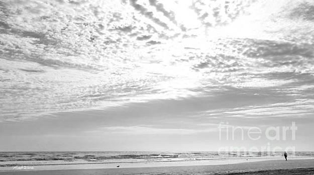 Michelle Wiarda - Winter Afternoon St Augustine Anastasia Island Florida