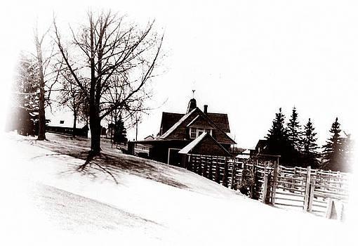Marcin and Dawid Witukiewicz - 1900 Farm Home