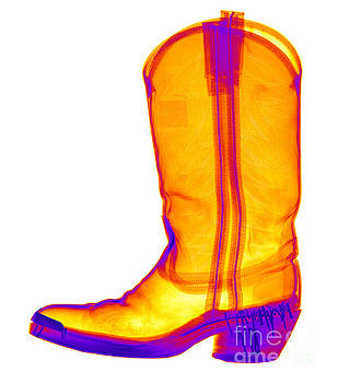 Ted Kinsman - X-ray Of A Cowboy Boot