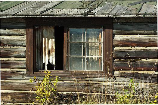 Sandra Bronstein - Bar BC Ranch - Grand Tetons
