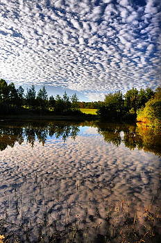 Emily Stauring - Cloudy Pond