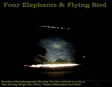 Phillip H George - Four Elephants And Flying Bird