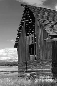 Sandra Bronstein - Montana Weathered Barn
