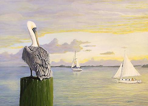 Jim Ziemer - Watching The Boats Sail By