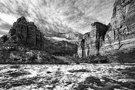 Christopher Holmes - Zion Canyon - BW